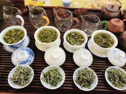 茶友交流,喜好茶叶的来