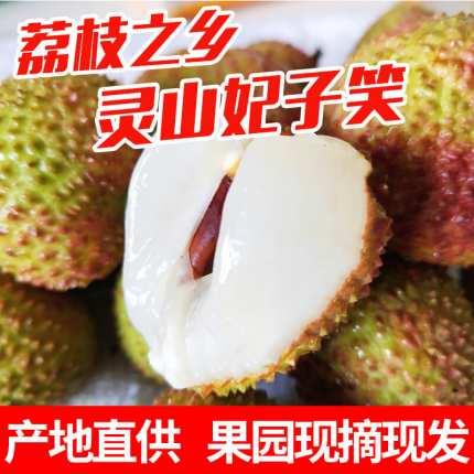 中国荔枝之乡广西灵山荔枝代理一件代发