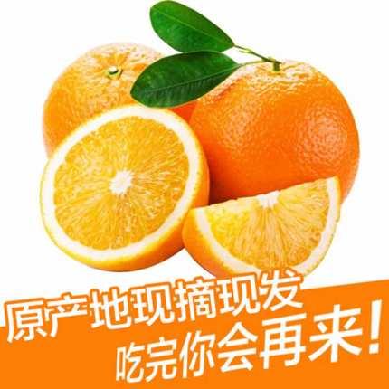 赣南脐橙:产地现摘现发,一件代发
