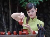 陶茶壶粉丝公众号( 满陶艺)