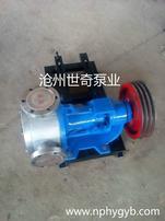 沧州世奇泵业